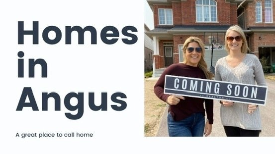 Three Homes Hitting The Market in Angus